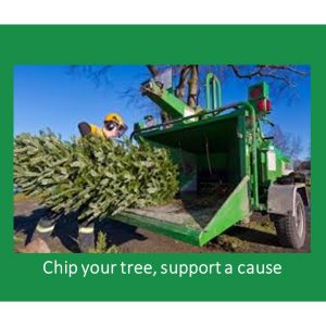 Chip your tree, support a cause