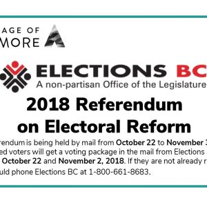 2018 Referendum on Electoral Reform