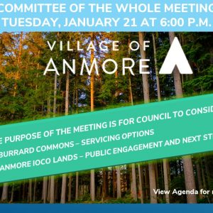 Committee of the Whole Meeting – Burrard Commons and Anmore Ioco Lands
